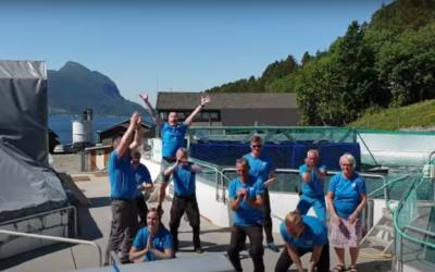 Et annerledesprosjekt om fellesskap og motivasjon for Lerøy Midt